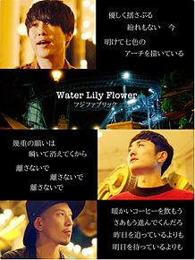 フジファブリック Water Lily Flower 歌詞画の画像(リリーに関連した画像)