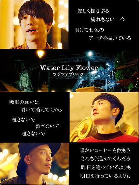 フジファブリック Water Lily Flower 歌詞画の画像 プリ画像