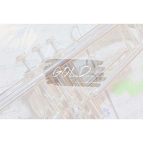 トランペット-GOLD金賞🏆✨の画像 プリ画像