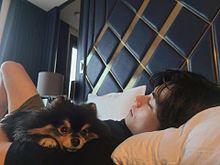 BTS   ヨンタンの画像(ヨンタンに関連した画像)