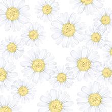 花 素材の画像(プリ画像)