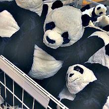 パンダの画像(モノトーンに関連した画像)