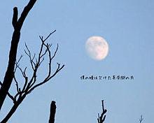 月食2 プリ画像