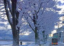 雪景色❄️の画像(プリ画像)