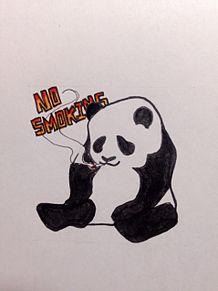動物その1の画像(パンダ イラストに関連した画像)