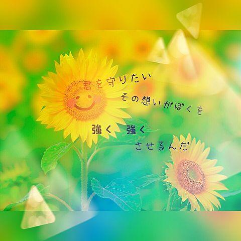 ファンキー加藤/太陽の画像(プリ画像)