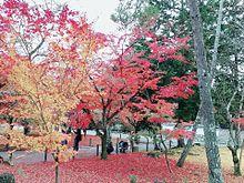 🍁京都の紅葉🍁の画像(京都 紅葉に関連した画像)
