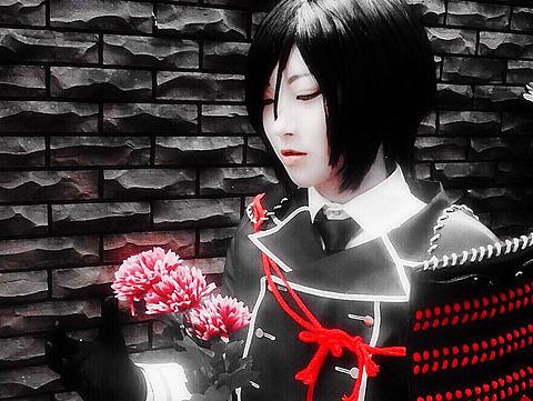 薬研×菊の画像(プリ画像)