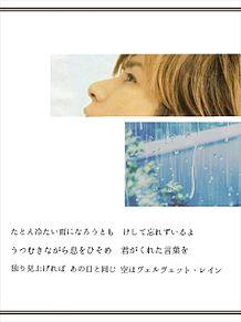 ヴェルヴェット・レインの画像(ヴェットに関連した画像)