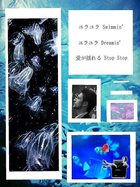 淋しい熱帯魚の画像(プリ画像)