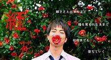 しげちゃんの画像(紅い花に関連した画像)