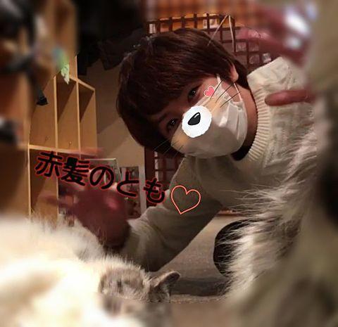 ともと猫(≡^.^≡)♪の画像(プリ画像)