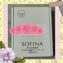 ソフィーナの画像(ソフィーナに関連した画像)