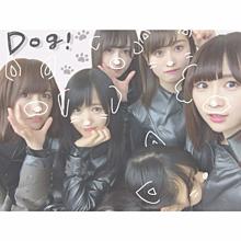 5 欅坂46の画像(おもしろ 待ち受けに関連した画像)