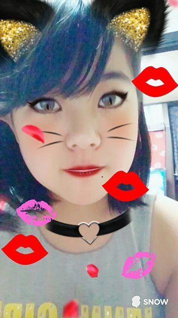 猫の片思い♥♥の画像(プリ画像)