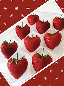 イチゴ 苺の画像(イチゴに関連した画像)