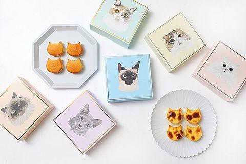 ねこねこチーズケーキ  写真右下のハートを押してねの画像 プリ画像