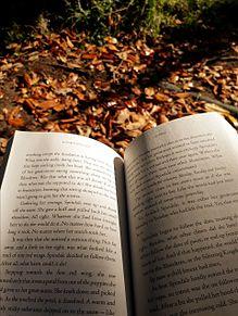 秋の画像(bookに関連した画像)