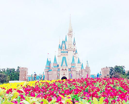 鮮やかな花とシンデレラ城