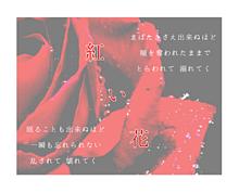 紅  い  花   .の画像(プリ画像)