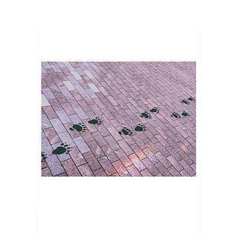 足跡。の画像 プリ画像