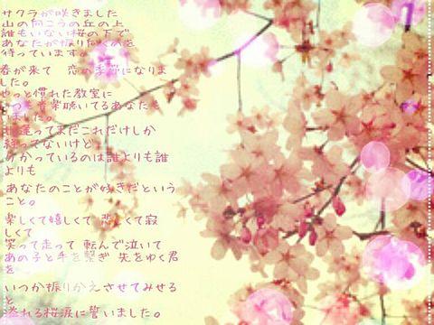 桜涙の画像(プリ画像)