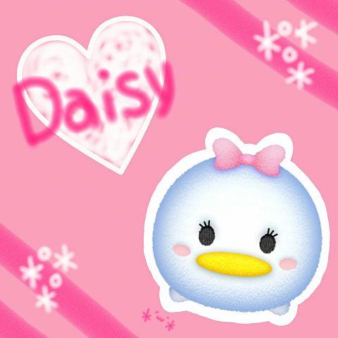 デイジーの画像(プリ画像)