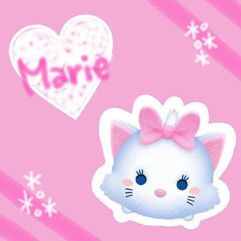 マリーちゃんの画像 プリ画像