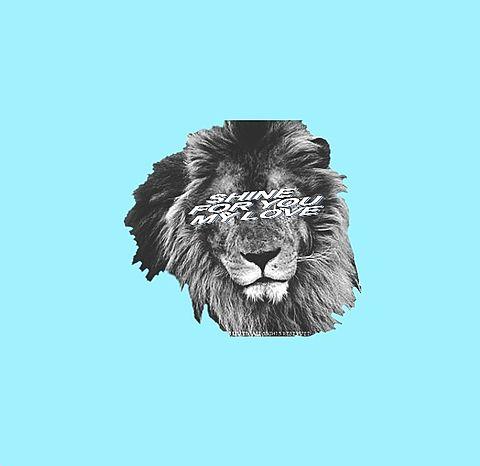 ライオンの画像(プリ画像)