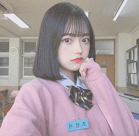 no  title🦍の画像(プリ画像)