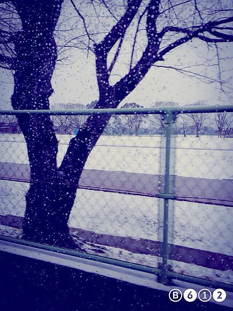 空と雪の画像(プリ画像)