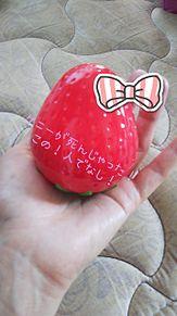 ケニーとイチゴLOVE❤️の画像(イチゴに関連した画像)