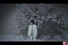 嵐 Lotus 櫻井翔 大野智 相葉雅紀 二宮和也 松本潤 プリ画像