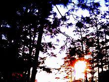 north sunsetの画像(NORTHに関連した画像)