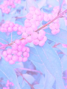 美仁ヰ プリ画像