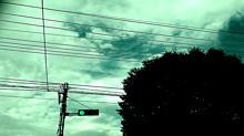 透かしの画像(緑に関連した画像)