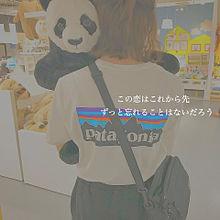ʕ·ᴥ·ʔの画像(可愛い パンダに関連した画像)