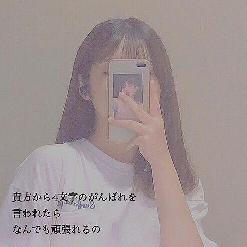 ❁✿✾  ✾✿❁︎の画像(プリ画像)