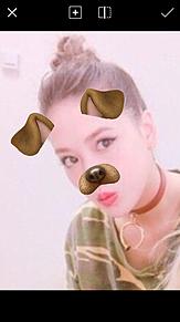 藤井夏恋 犬の画像(プリ画像)