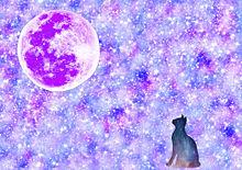 月と猫の画像(#加工に関連した画像)