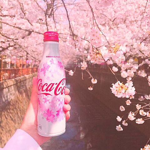 桜さくら花びら可愛いCoca Colaロゴオシャレ素材の画像(プリ画像)