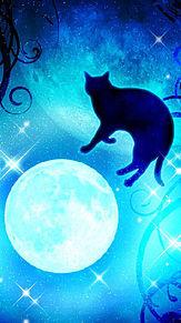 月と黒猫の画像(プリ画像)