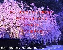 桜花二月夜ト袖シグレ 歌詞画の画像(プリ画像)