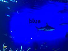 deep blueの画像(DEEPに関連した画像)