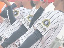 2019年 希望が丘戦の画像(高校野球に関連した画像)