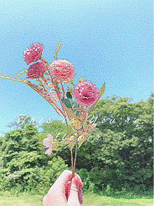 造花を空に掲げた写真! プリ画像
