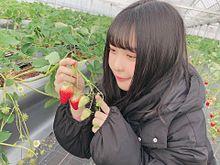 SKE48 浅井裕華 プリ画像