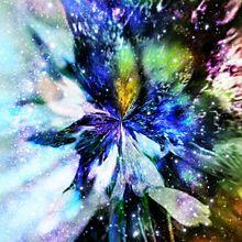 桜画像を宇宙柄に プリ画像