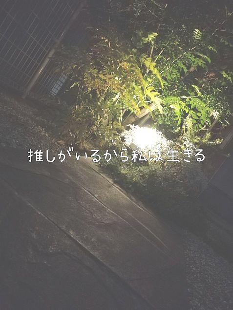 推しの画像(プリ画像)