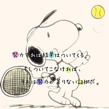 スポーツの画像(ソフトテニス 名言 かわいいに関連した画像)